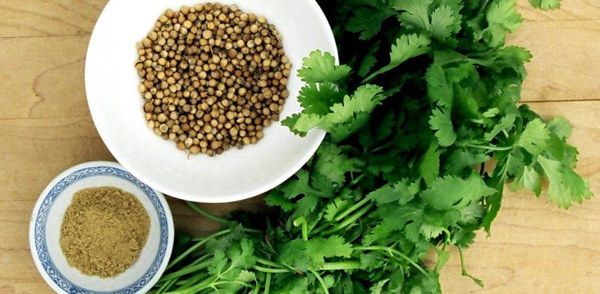 Abdominal Aortic Aneurysm home remedies
