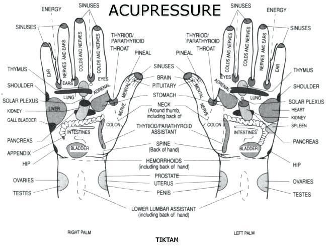 Acupressure Points Chart